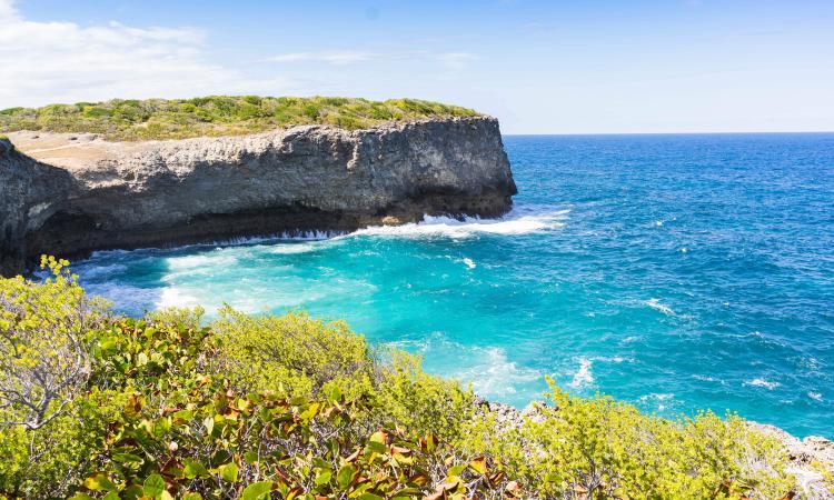 Découvrir ou Redécouvrir la Guadeloupe